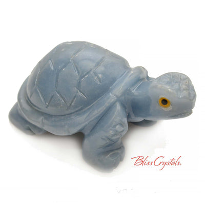 Angelite Turtle Stone Yellow Eye Color Carving Decor, Sculpture #AT36
