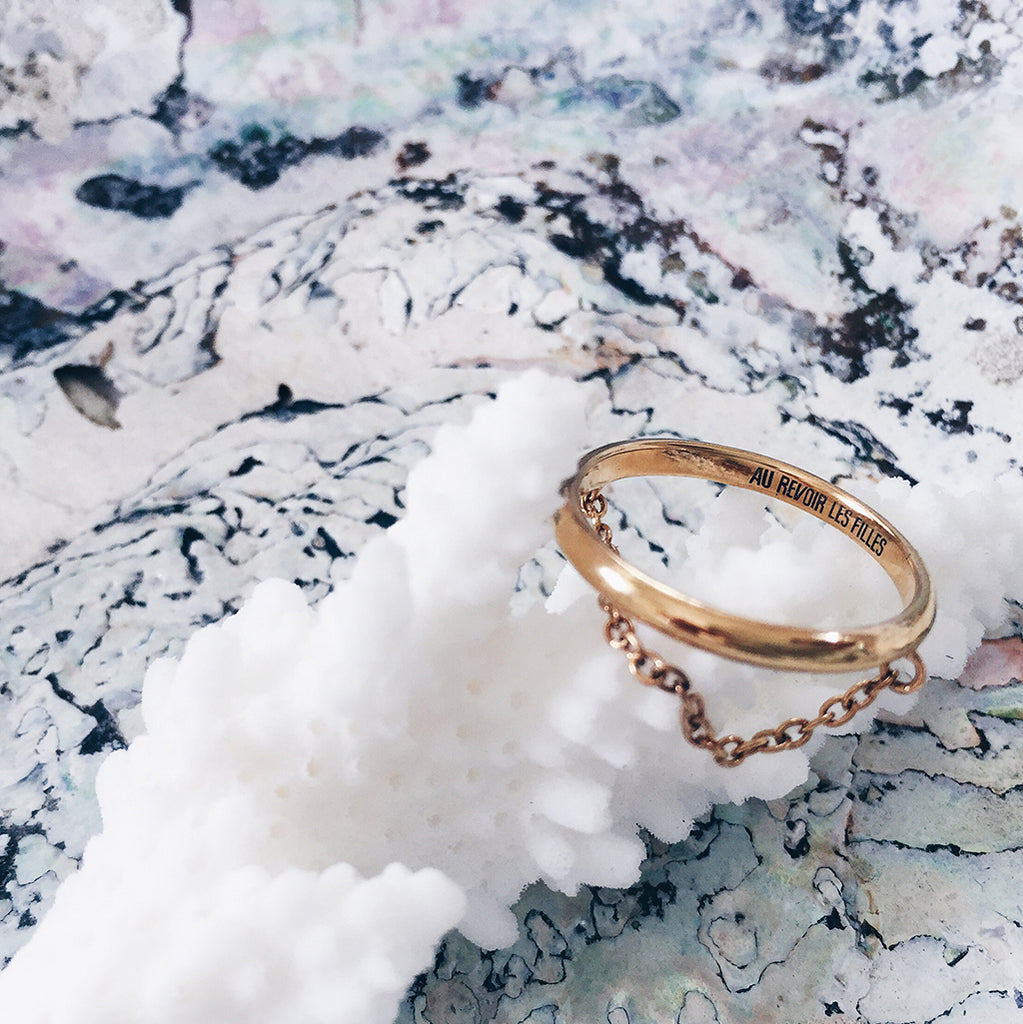 fine gold chain ring resting on a white coral in a beautiful jewellery display set against pink blue grey mother of pearl seashell - womens jewellery flatlay