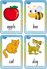 NSW Foundation Font Special Needs Alphabet Flashcards and Handwriting Kit.