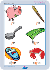 Consonant Phonemes Posters using NSW Foundation Font. Excellent product for special needs kids.