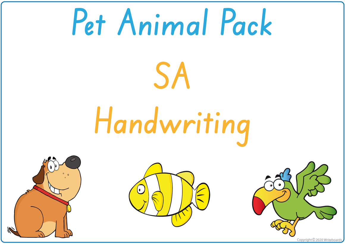 SA Beginner's Font Busy Book Pet Animals Pack also contains Flashcards and a Bingo game
