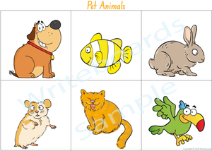 Busy Book Pet Animal Pack where your child has to add the NSW & ACT names