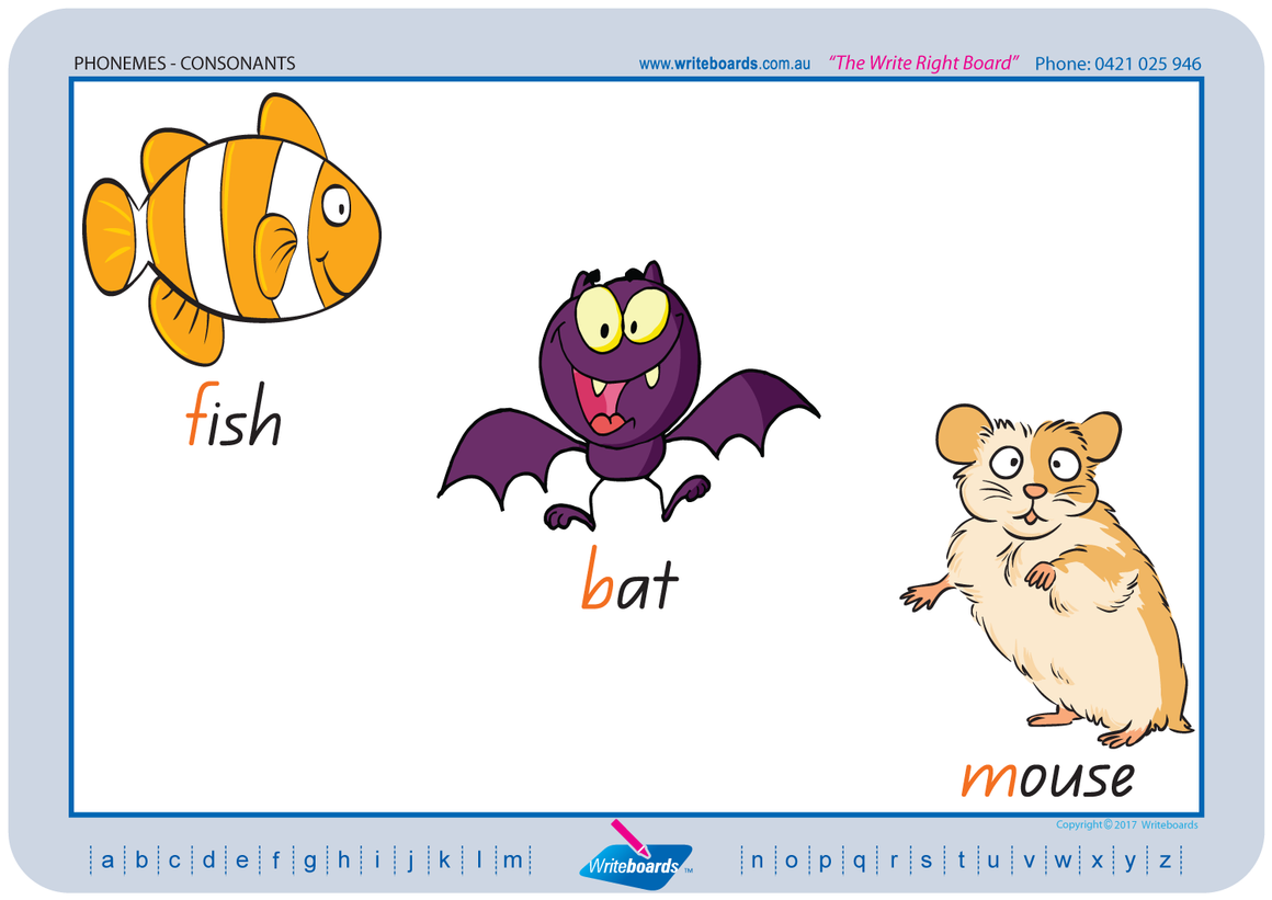 QLD Modern Cursive Font colour coded Consonant Phonemes posters and resources for teachers and schools