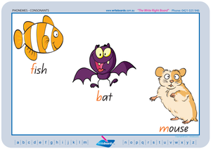 Special Needs Consonant Phonemes Poster using QLD Modern Cursive Font handwriting