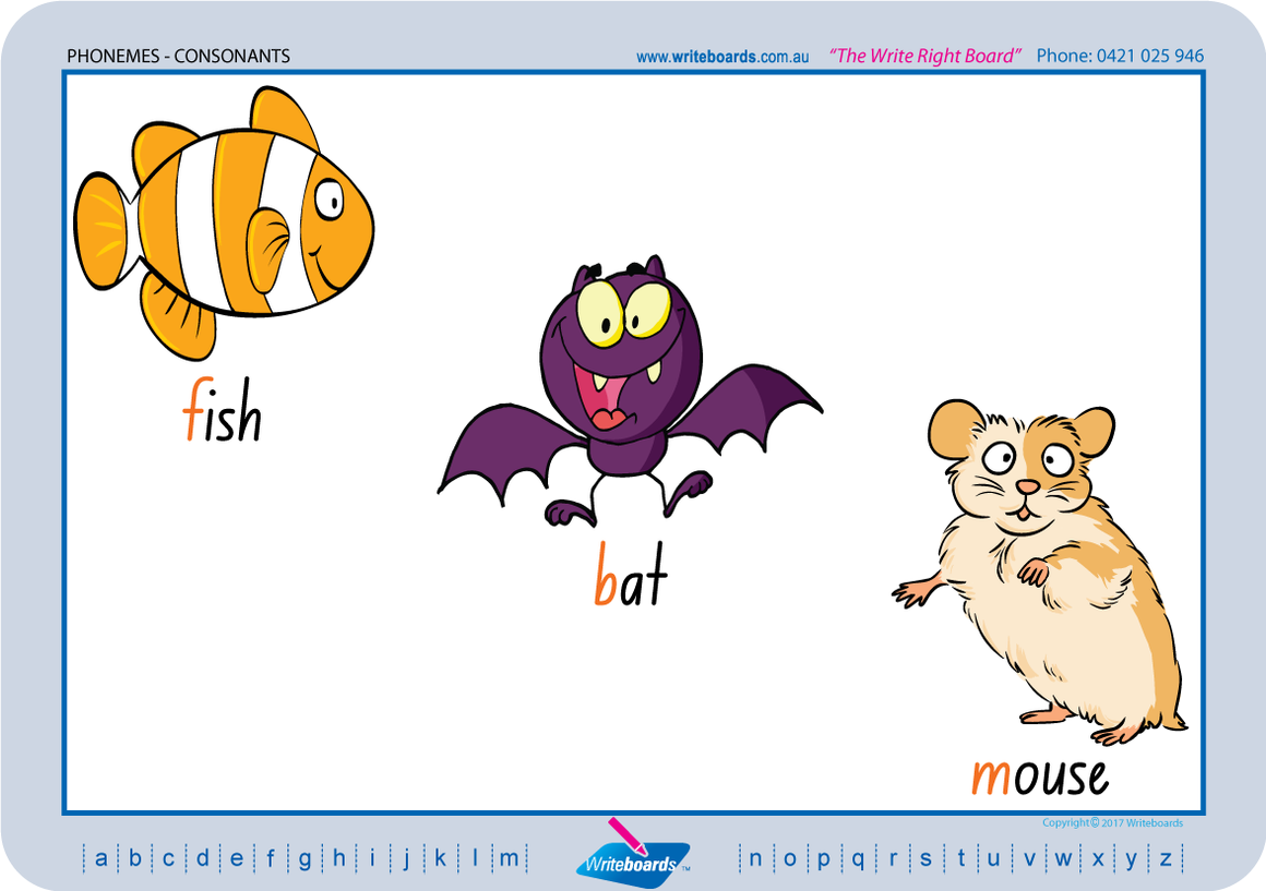 NSW Foundation Font Consonant Phoneme Posters for Tutors and Therapists with descriptive pictures