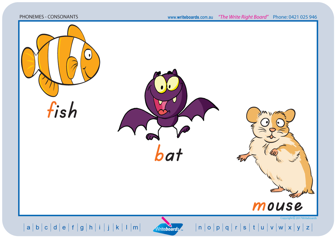 TAS Modern Cursive Font colour coded Consonant Phonemes posters and resources for teachers and schools