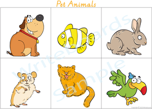 VIC / NT & WA Busy Book Pet Animals, Your child has to add the Names