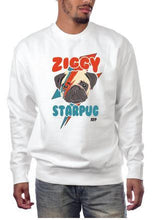 Ziggy Star Pug