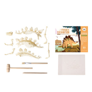 JOAN MIRO Fossils Excavation Kit - Stegosaurus