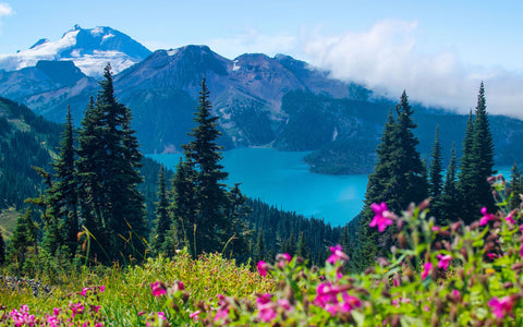 Garibaldi Lake Hike - Livv Adventures