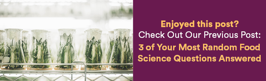 Dineamic Blog | 3 of Your Most Random Food Science Questions Answered