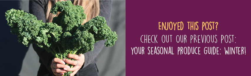 Dineamic Blog | Your Seasonal Produce Guide: Winter