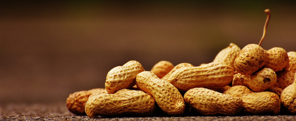 Dineamic Blog | Common Food Allergies in Australia