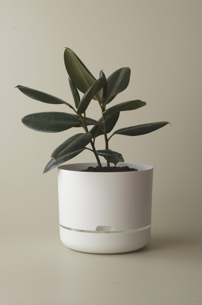 Mr Kitley Selfwatering Plant Pots White 300mm