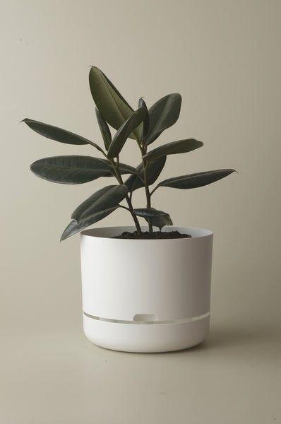 Mr Kitly Selfwatering Plant Pots White 300mm