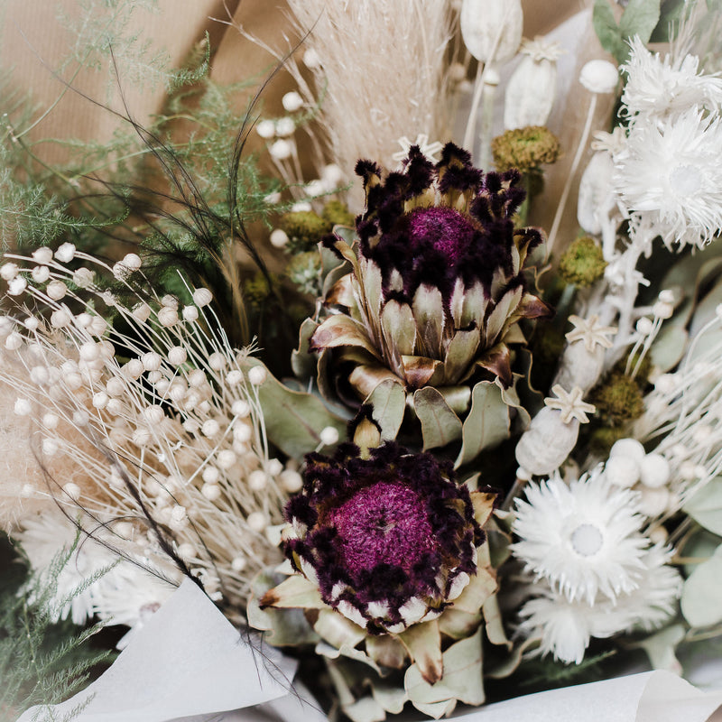 Protea Daiquiri Luxury Bouquet