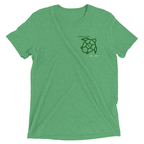 Sea Turtle Short sleeve t-shirt