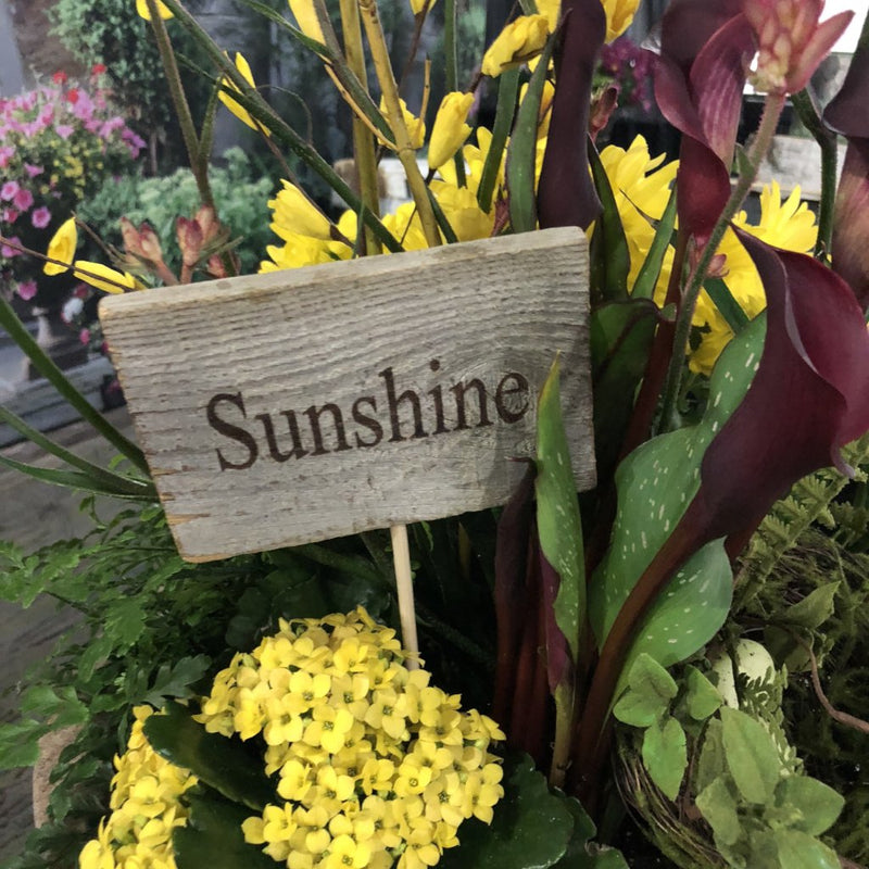 Rustic Cedar Sign Pick, Sunshine-Simple and Grand-Default-Simple and Grand