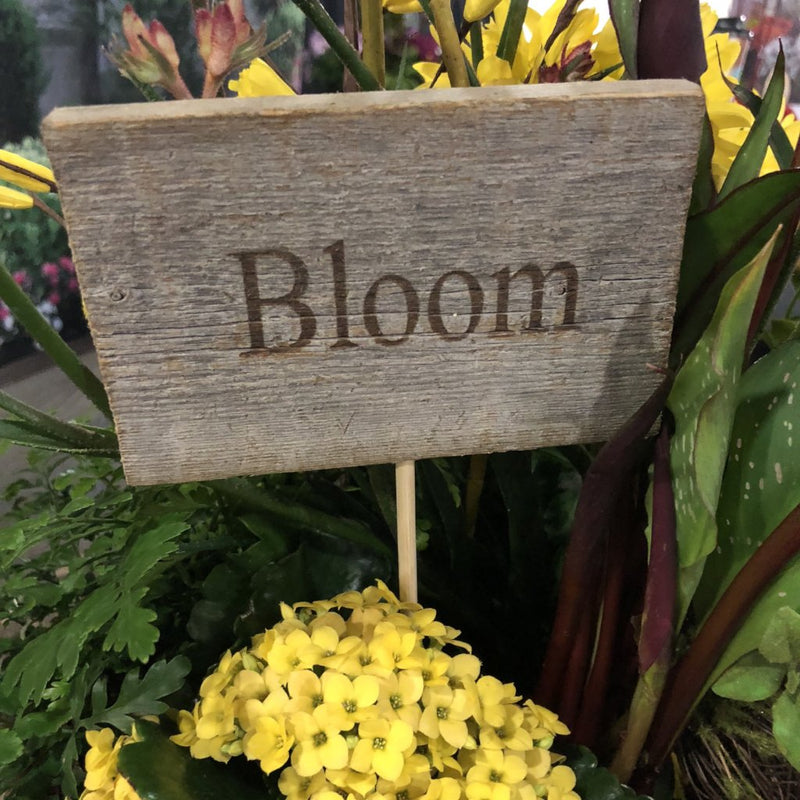 Rustic Cedar Sign Pick, Bloom-Simple and Grand-Default-Simple and Grand