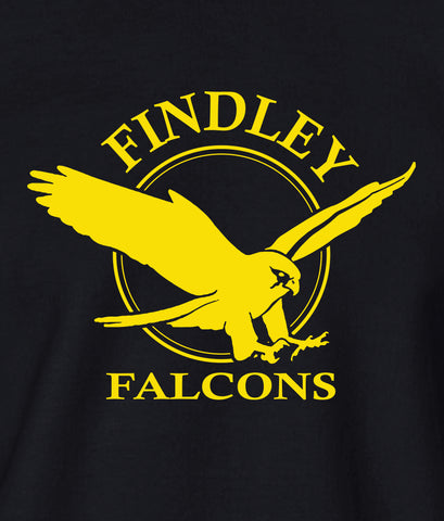 Findley Falcons