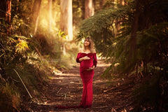 Chrissi Velvet Maternity Gown