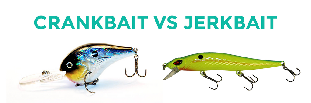 Jerkbait vs Crankbait - Differences and Comparison
