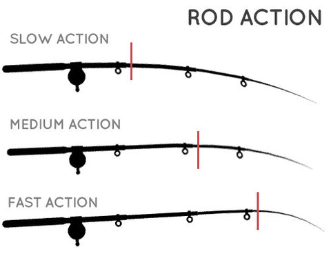 Fishing rod action comparison chart