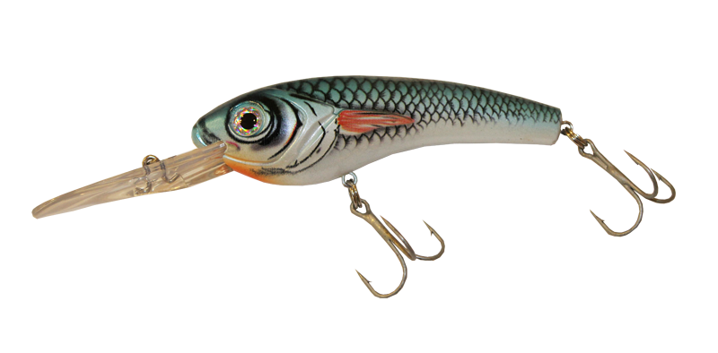Alosa Major - Blueback Shad Crankbait
