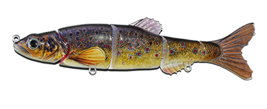 Aqua Relic Minnow - Brook Trout Swimbait