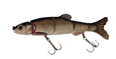 Aqua Relic Monster - Creek Chub Swimbait