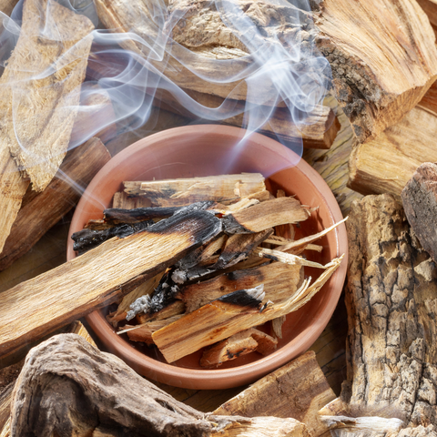 Palo Santo for smudging your home