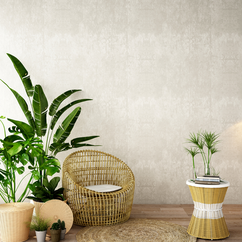 indoor plants that help with radiation