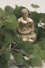 Buddha And Quan Yin Frequency Generators