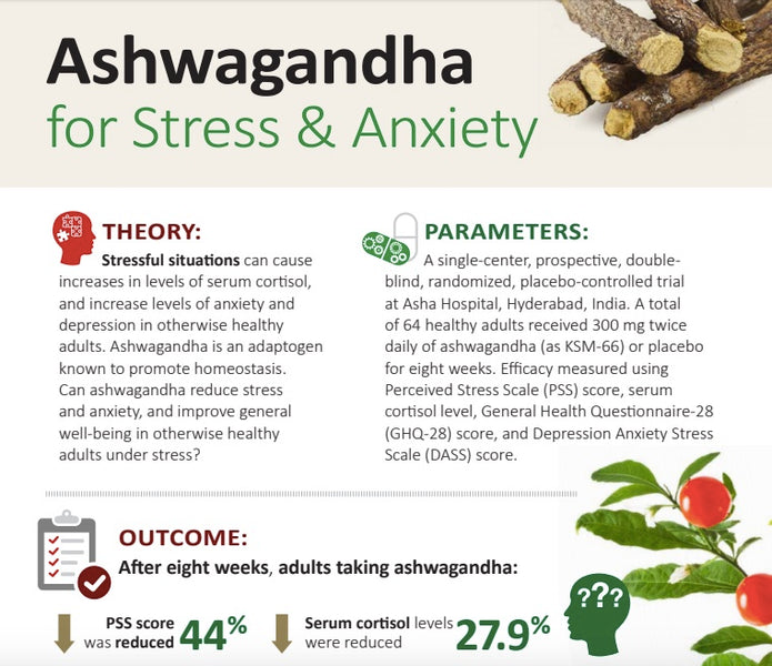 KSM-66 Ashwagandha For Stress And Anxiety