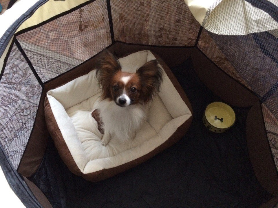 Pet Dog Bed Warming Dog House Soft Material Pet Nest Dog Fall and Winter Warm Nest Kennel For Cat Puppy Black/Coffee