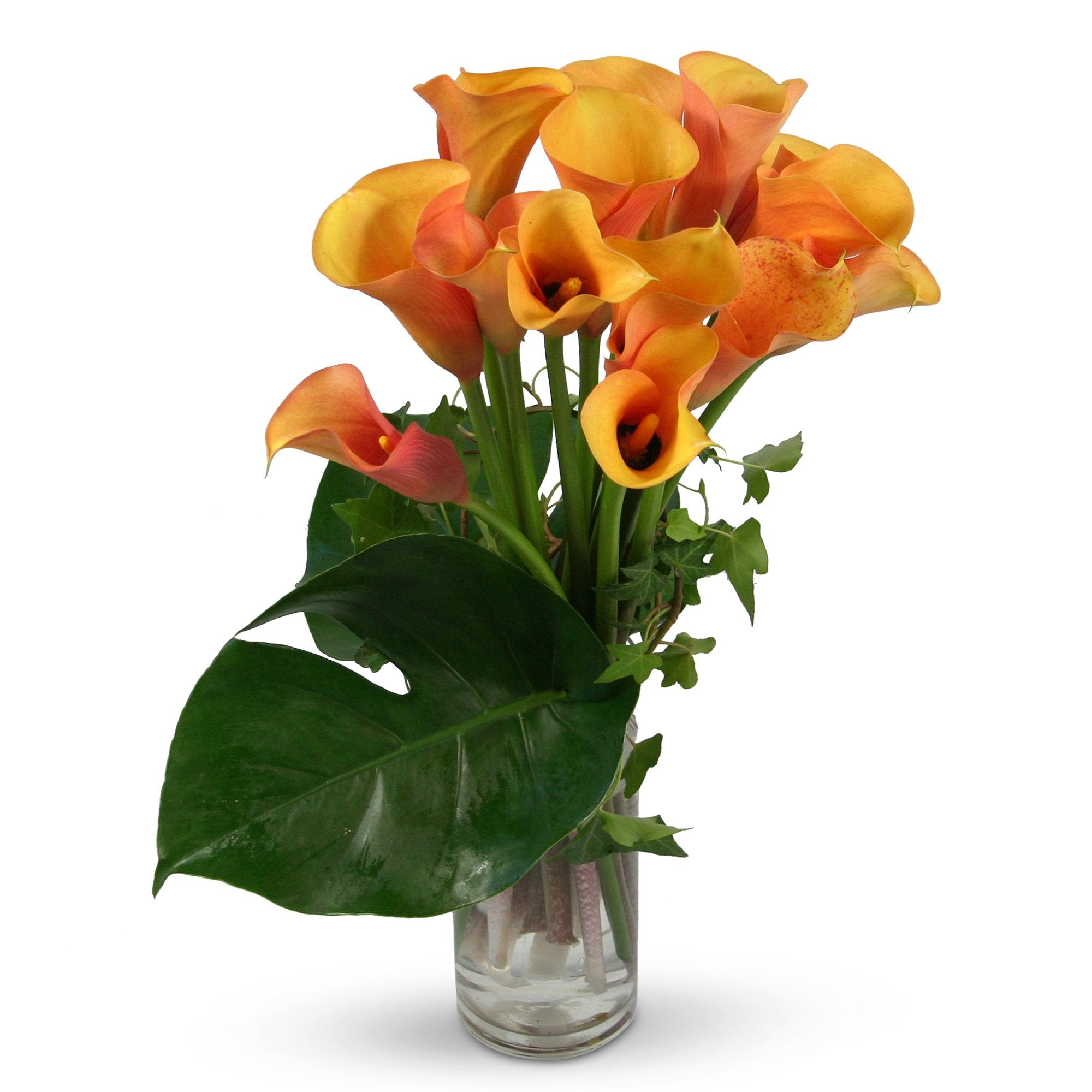 Florist brisbane same day flower delivery divine flowers wilston delicious soft orange and golden spathes the flowers have a lovely flush of pink izmirmasajfo