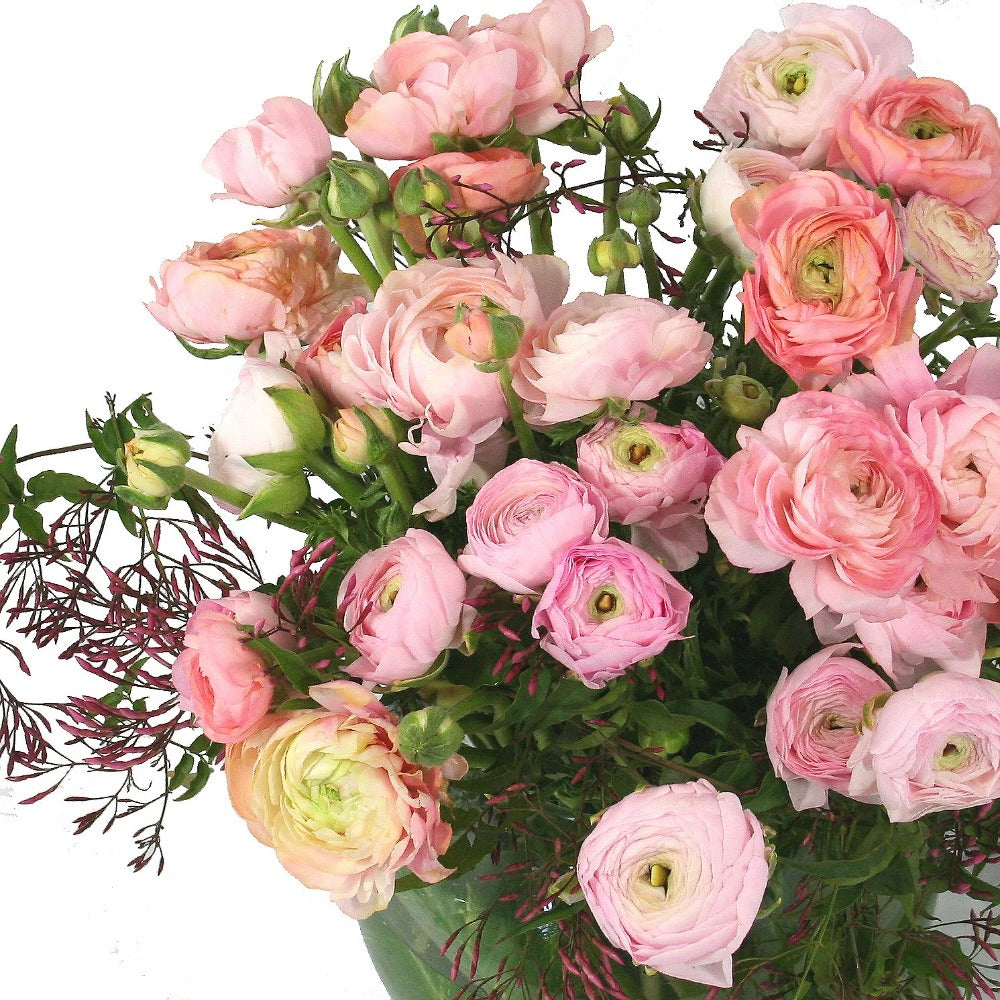 Florist brisbane same day flower delivery divine flowers wilston grand size romantic spring ranunculus in a simple glass vase for same day delivery in dhlflorist Choice Image