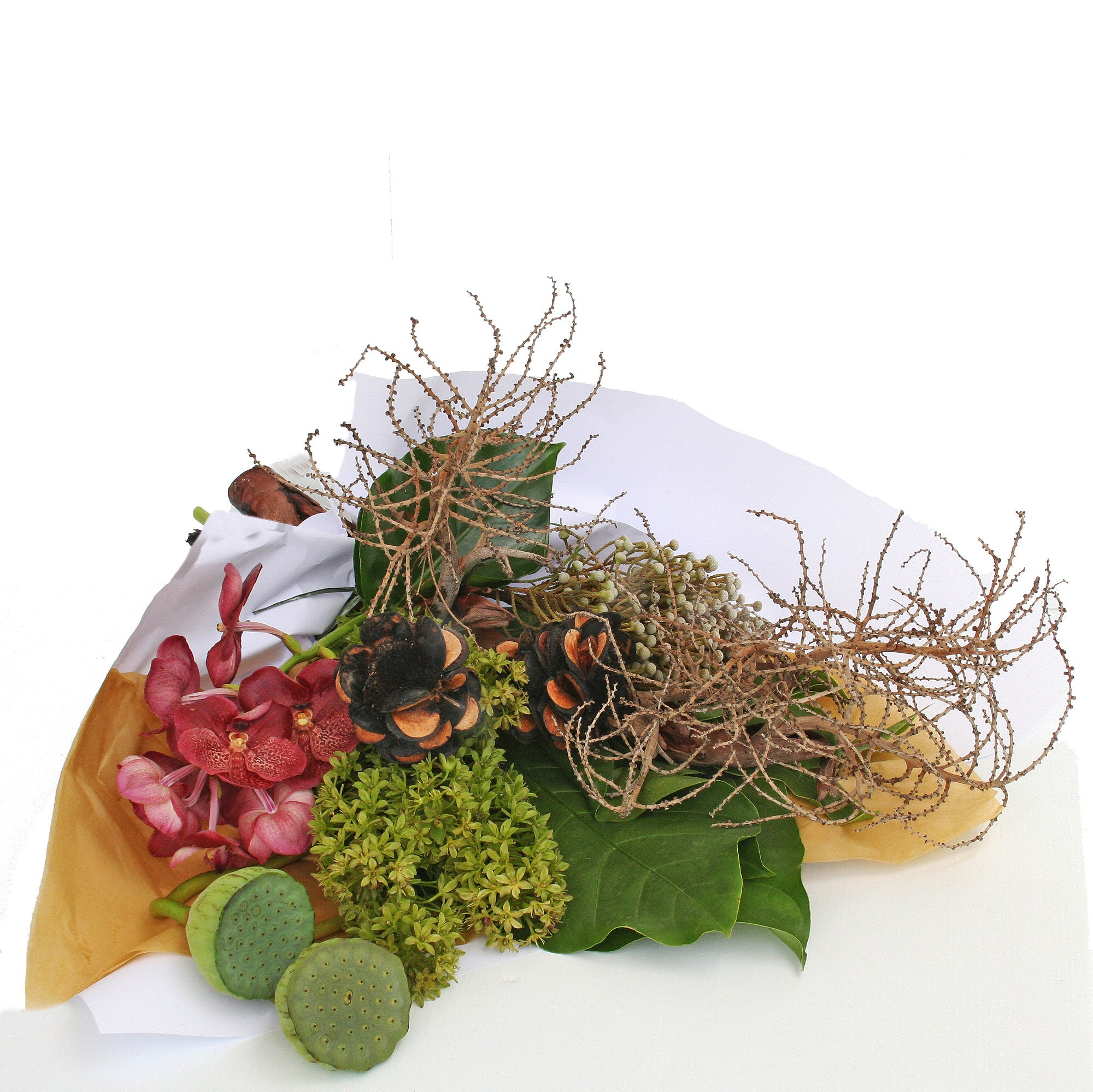 Florist brisbane same day flower delivery divine flowers wilston a flower wrap of sculptural flowers and pods with tropical leaves and interesting foliages izmirmasajfo