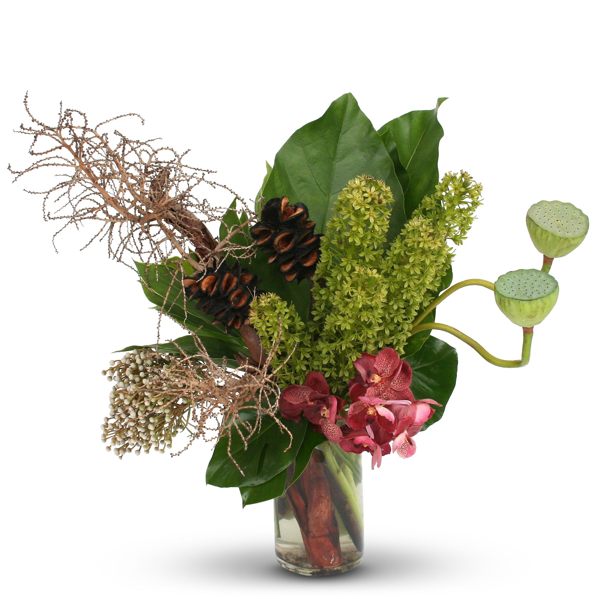 Florist brisbane same day flower delivery divine flowers wilston sculptural native and seasonal flowers and botanical elements designed in a tall glass vase izmirmasajfo