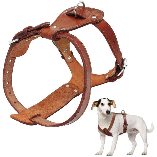 "Dog Collars & Harness - Genuine Leather Dog Harness  ~ 16""-30"" Chest Adjustable Straps For Medium Large Dogs Pitbull Boxer Mastiff"