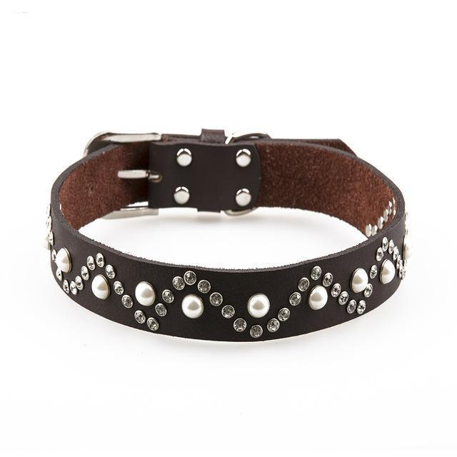 Dog Collars & Harness - Genuine Leather Dog Studded Collar ~  Pet Accessories