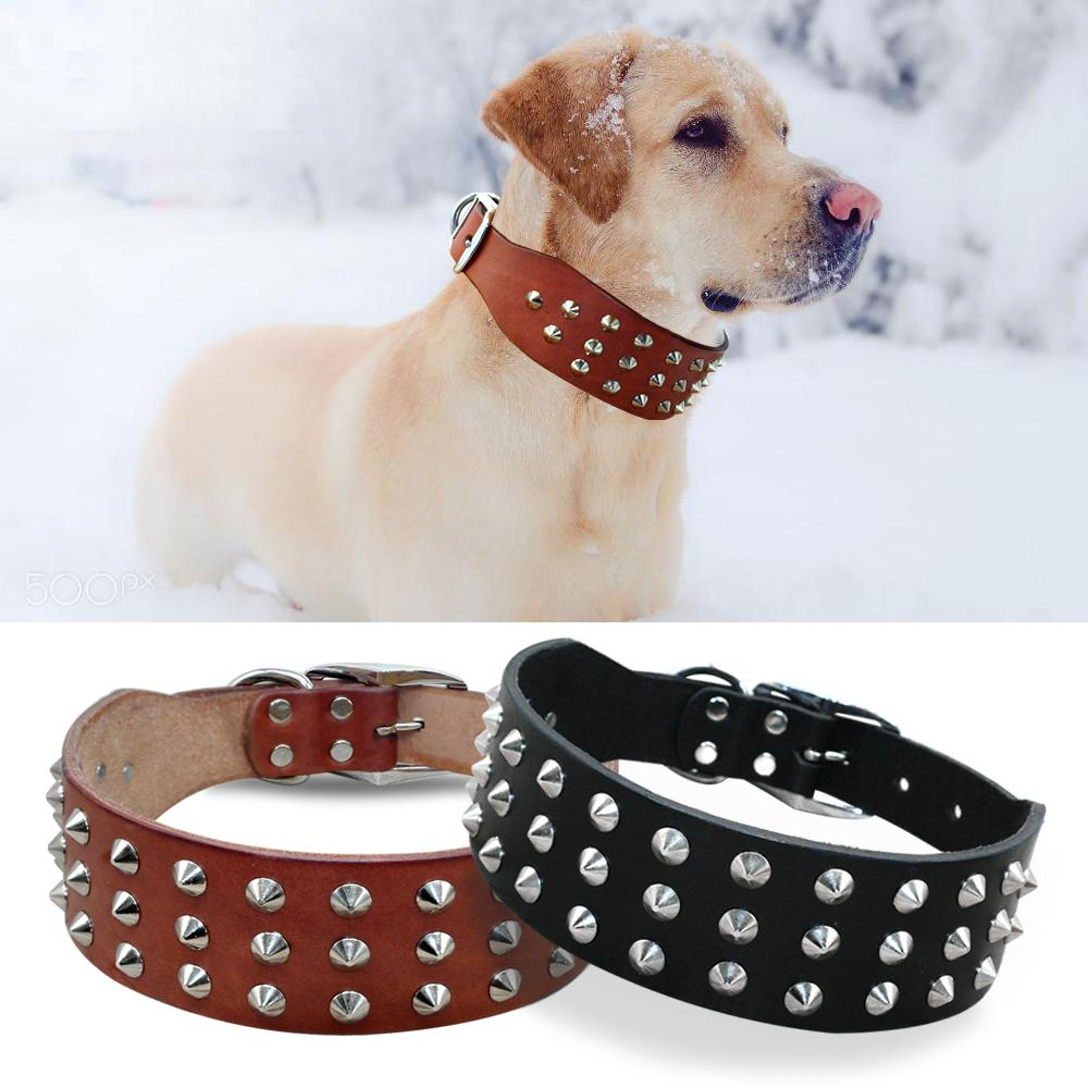 Dog Collars & Harness - Pet Bonito: Rivets Studded Genuine Leather Dog Collar ~ For Small Medium Large Dogs
