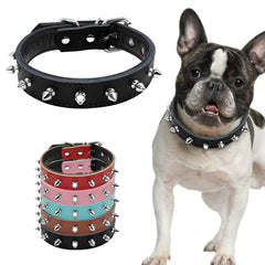 Dog Collars & Harness - Pet Bonito: Spiked Studded Padded Leather Dog Collars For Small Medium Dogs