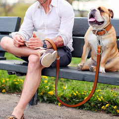 Genuine Leather Collar and Leash Set  - Adjustable For Small Medium Large Dogs Pitbull Boxer Bulldog - Brown