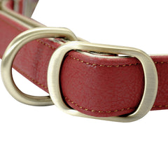 Adjustable Padded Dog Collar - Leather - Metal Accessories For Medium Large Dogs French Bulldog Pitbull