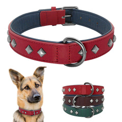 dog-collar-spiked-genuine-leather-pet-bonito