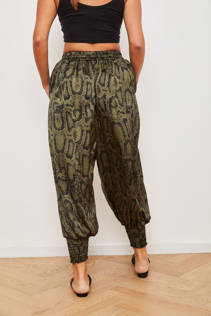 Winter 2021 -  Aladdin pants- Green snake