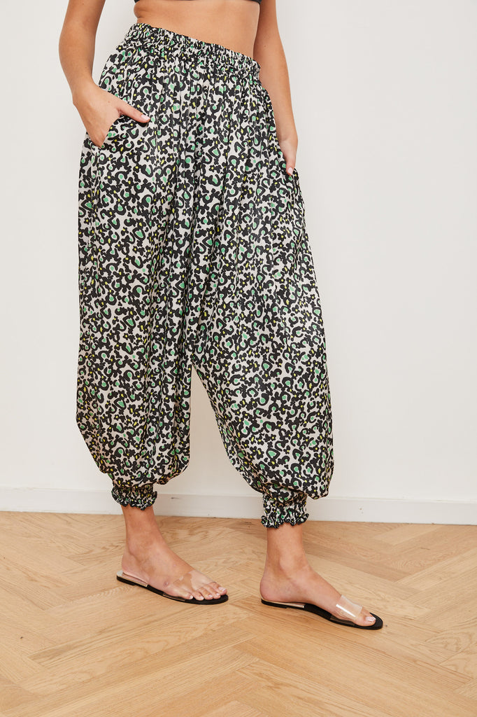 Winter 2021 -  Aladdin pants- Colorful leopard