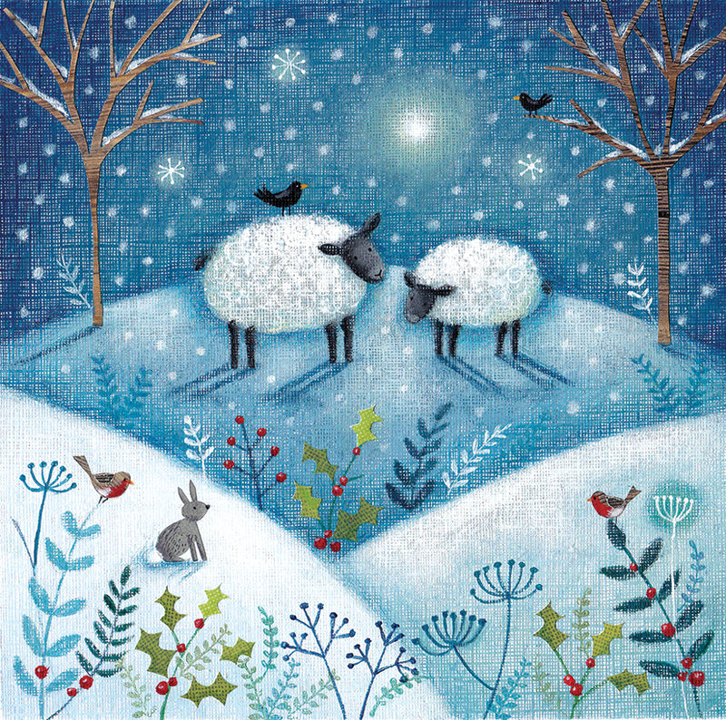 North Star Snowy Sheep Christmas Card
