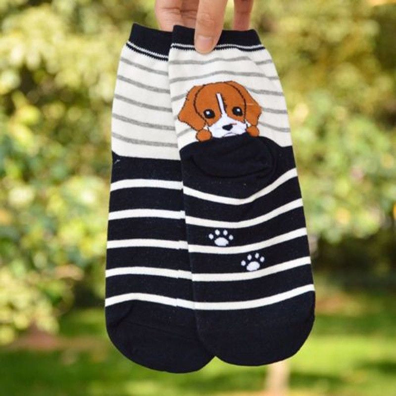 3D Puppy Printed Cotton Socks-Themed Gifts-Beagle-Pets Hub Home